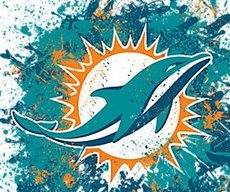 GoPhins!
